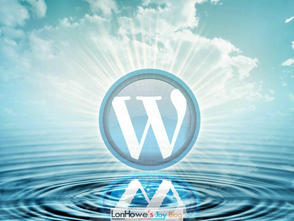 站长需要什么样的wordpress插件-LonHowe Blog